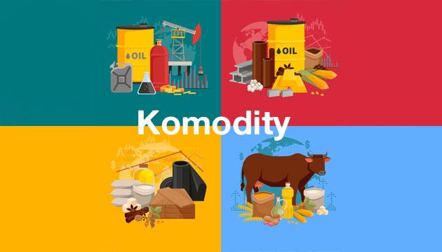 Komoditní trh